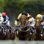 foto-corrida-cavalo-14 (1)